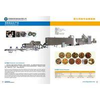 鼎润DSE-65宠物食品生产线