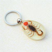 礼品批发 特价供应 琥珀钥匙扣 昆虫琥珀饰品 旅游纪念品