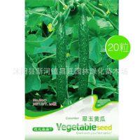 翠玉黄瓜种子 黄瓜 菜籽 家庭室内阳台种盆栽蔬菜种子 一袋20粒