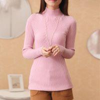 2015新款韩版竖条纹修身弹力半高领套头针织打底衫女款毛衣