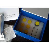 大鼠鼠痘病毒ELISA检测试剂盒