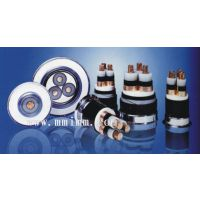 供应齐鲁牌铜芯聚乙烯绝缘聚乙烯护套交联电缆YJV32 2*2.5+1*1.5