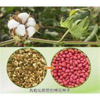 山东种子带|潍坊晟海农业科技|种子带编织机图片