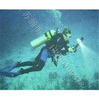 水下摄像,探摸,检测,切割,焊接