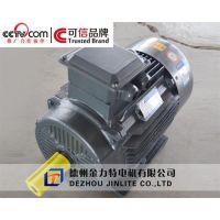 扬州YVF2变频电机,金力特,YVF2变频电机龙头厂家
