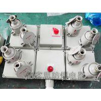山东BXX52-2/16防爆检修电源插座箱220/380V带总开关防爆插座箱