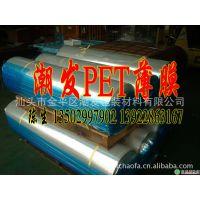 批发耐高温热转印PET离型胶片 YC-06 39*54 冷撕哑光薄膜