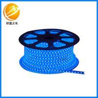 厂家生产 高亮3014贴片高压60珠防水LED灯带 贴片软灯带灯条