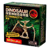 新爆品 恐龙帝国 DIY益智玩具 儿童智力玩具 翼龙 探索挖掘