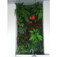 青城绿植|仿真植物|定制植物墙|装饰植物墙|易打理|可拆卸