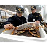 北京海鲜清关服务公司|北京螃蟹鲍鱼进口|北京报关报检服务公司
