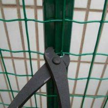 网孔6厘米x6厘米高1.5米2.4毫米粗铁丝网塑胶养鸡围网浸塑护栏网优盾厂家
