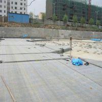 驻马店市复合土工膜、金驰华易田龙(图)、郴州复合土工膜