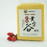 大叔的田 健康原生态优质黄小米