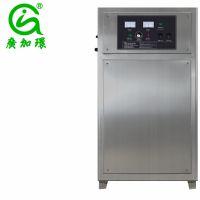 供应北京臭氧发生器空气净化器消毒杀菌设备臭氧发生器广加环HY-015-50克臭氧发生器价格