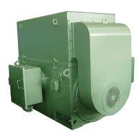 四达电机供应YX系列6KV、10KV三相异步电动机YX3551-4邯郸电机厂