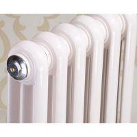 北铸散热器(在线咨询)、铸铁暖气片、铸铁暖气片哪家好