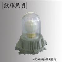 欧辉NFC9181防眩无极灯 节能通道灯