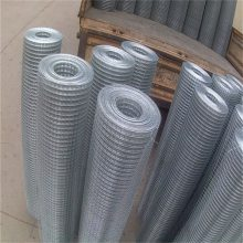 电焊网厂家 镀锌铁丝网 天津电焊网