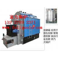 发酵罐反应釜夹层锅搅拌机乳化机等设备的配套使用天然气煤气蒸汽锅炉