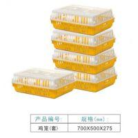 海南塑胶鸡笼 全新料塑料鸡笼 海口文昌洋浦琼海养殖鸡笼