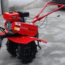 186型柴油田园管理机 润丰 电启动旋耕开沟机价格