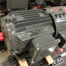 上海德东电机 厂家直销 YVF2-100L2-4 3KW B5 变频调速电动机