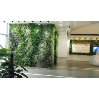 武汉植物墙价格_植物墙施工单位_随州植物墙