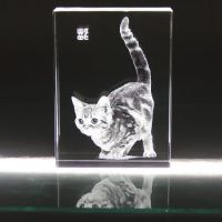 宠物猫纪念品,相片内雕纪念品,惠州礼品厂家