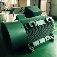 西安西玛YB2 YBX2系列YB2 4501-2 500KW 6KV高压隔爆型三相异步电动机