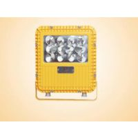 BC9101 LED防爆泛光灯