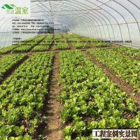 供应东莞蔬菜大棚FC-014、蔬菜大棚厂家、芳诚温室--18988967562