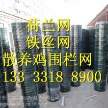 塑料铁丝网 绿色塑料皮围栏网 实体工厂销售浸塑焊接防护网