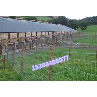 庭院围栏 养殖围栏 铁围栏 钢丝围栏