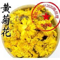 供应黄菊花,孔雀草,五瓣莲、孔雀菊、小万寿菊、红黄草