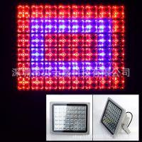 led RGB投光灯10w20w30w50w rgb投光灯 带遥控 rgb投光灯厂家