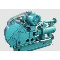 上海厂家专业生产批发直销一环牌WBR电动高温往复泵