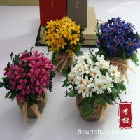 美人菊 美人菊韩式雏菊盆景仿真花欧式花艺套装整体装饰花客厅