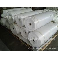 厂家生产聚氯乙烯PVC软板\硬板、透明板、厚板18769618550