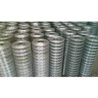 环航现货120丝经不锈钢电焊网,304材质|10公分孔不锈钢电焊网