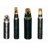 ZR-KVVP2-22阻燃控制电缆