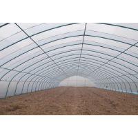 优质的大棚钢架批发 蔬菜大棚钢架厂家现货批发 900吨库存
