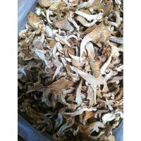 巴西菇 鲍鱼菇 平菇 真姬菇 姬松茸 松茸 江湖展销会热销新产品
