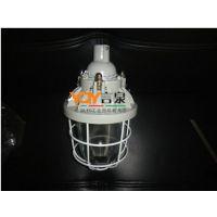 GCD5012隔爆型防爆灯GCD5012-100W防爆金卤灯