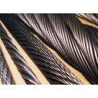 供应韩国大象钢丝绳 进口钢丝绳