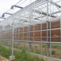 供应玻璃温室 温室大棚 建设 蔬菜 花卉 育苗 种植 大棚骨架