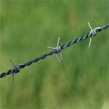 刀片刺绳防护网 围墙钢丝网 带刺钢丝网