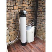 美国 恬净 中央净水机 优质活性炭 武汉安装中央净水安装公司