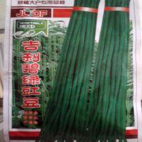 蔬菜种子 豆角种子 碧绿三号 20克 家庭小菜园专供用种