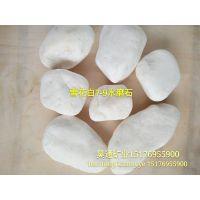 供应优质雪花白|大小规格齐全|河北大理石环养机制水洗石